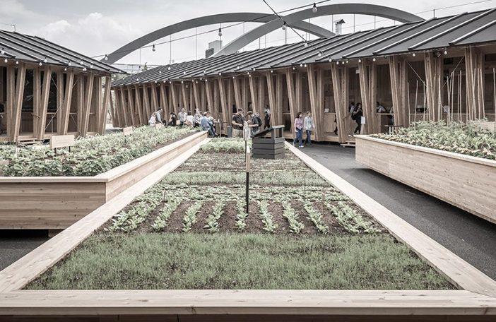 Herzog-de-Meuron-.-Slow-Food-Pavilion-.-Milan-7-1200×801