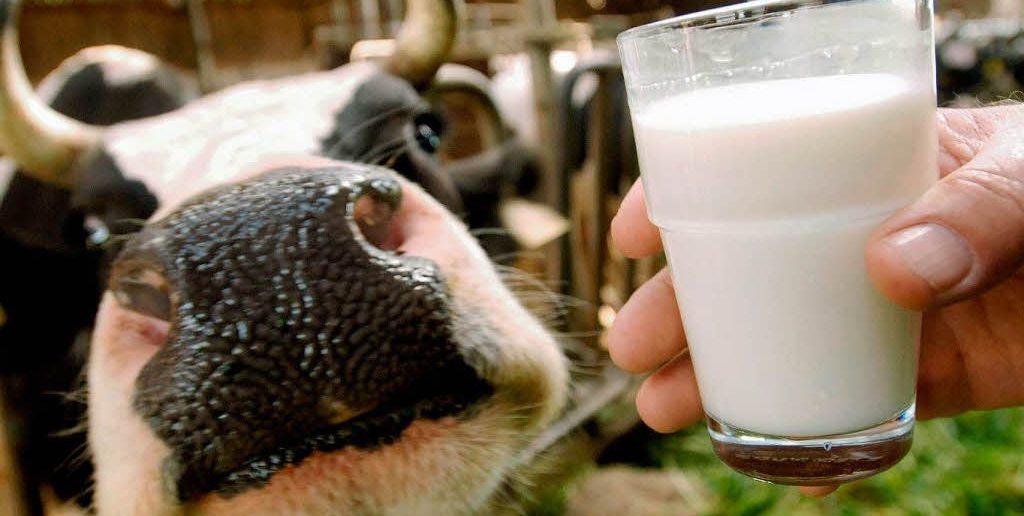 milk-china
