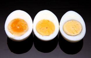 eggs-01